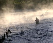 A fishing sports package - full focus on salmon fishing!