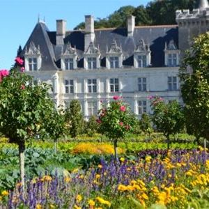 IDYLLIC LOIRE VALLEY - 3 DAYS/2 NIGHTS from 227€/person