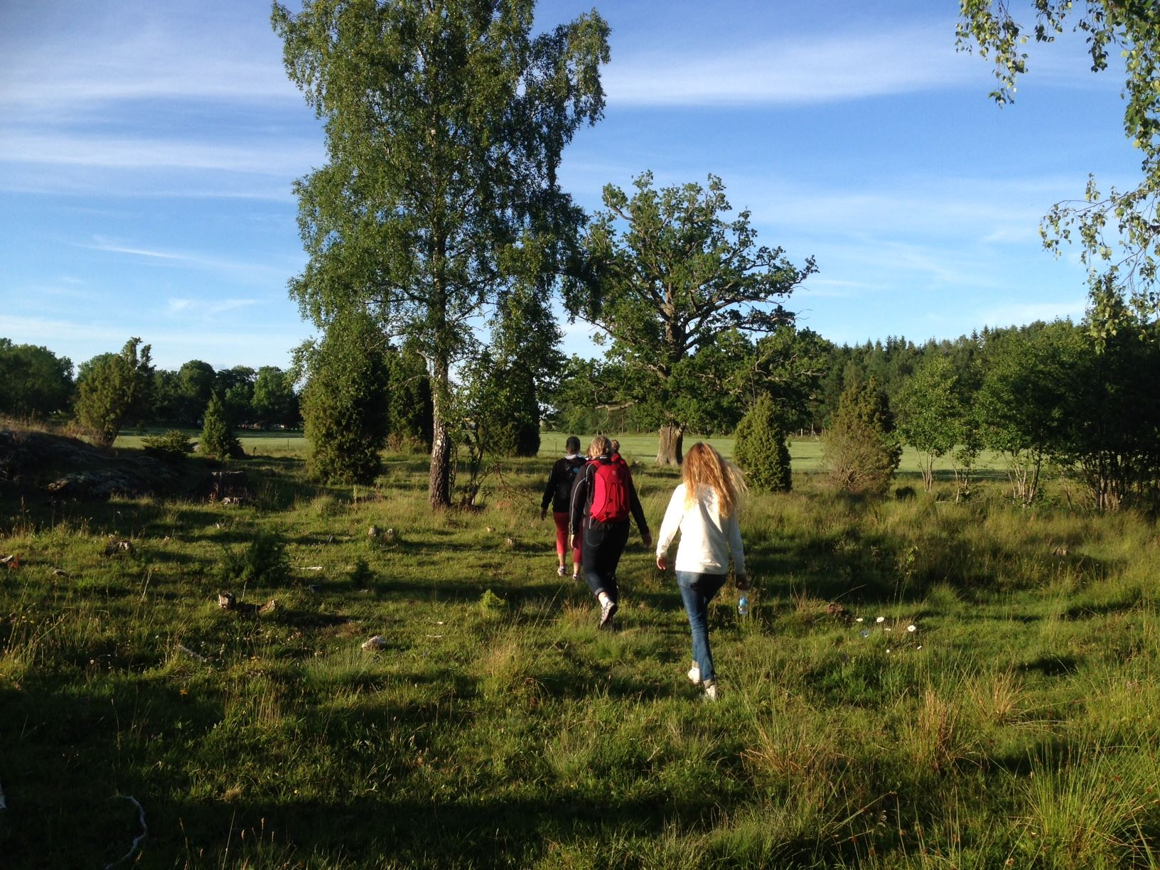 Walking in the Läckö-Kinnekulle