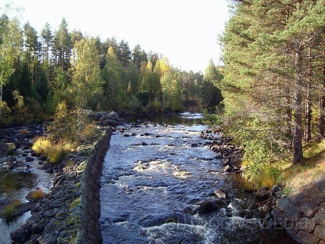 Ängra Wildlife & Fiskecamp