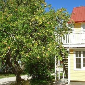 Paradiset Björkhaga B&B