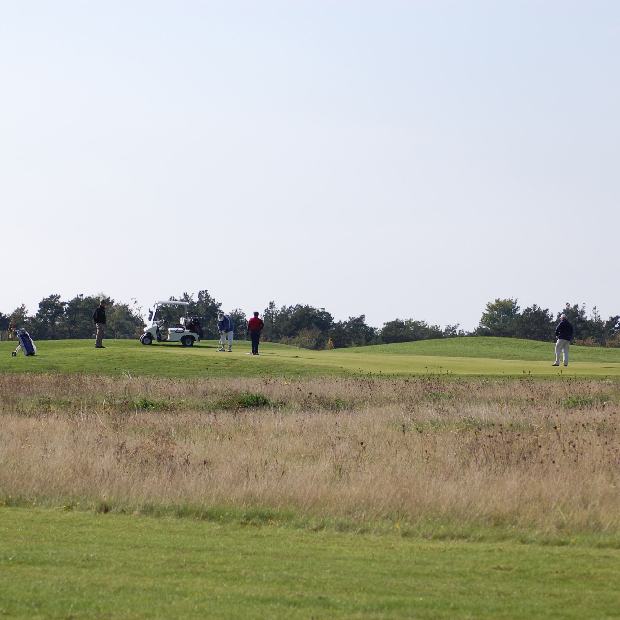 Gotska Golf Club