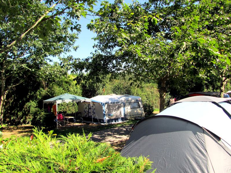 Camping Suhiberry