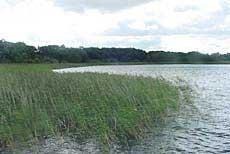 Råbelövssjön