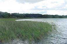 Råbelövssjön (lake)