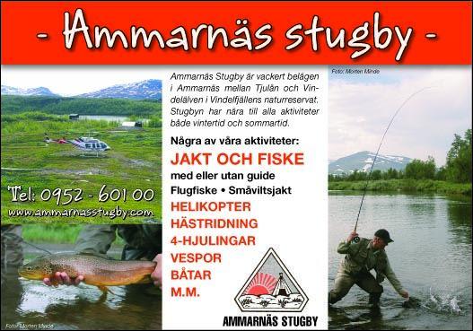 Ammarnäs Stugby (Cabin hire)