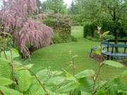 Bibliska trädgården