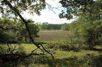 Åvarps Fälad nature reserve