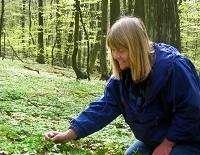 Söderåsens Naturinformation & Naturguidning