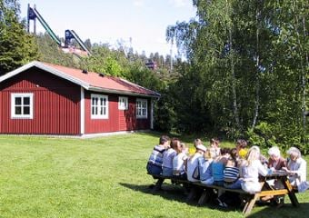 Nordic Camping Lugnet/Cottages