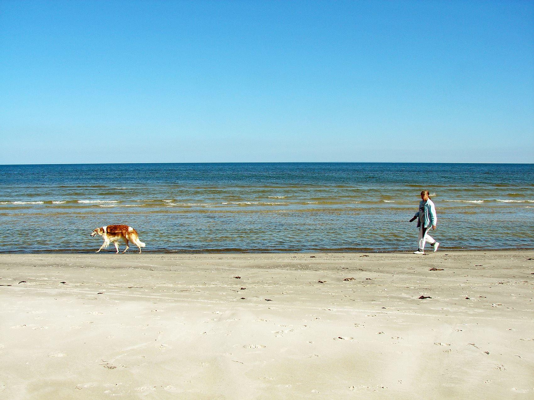 Beach - Kyhl