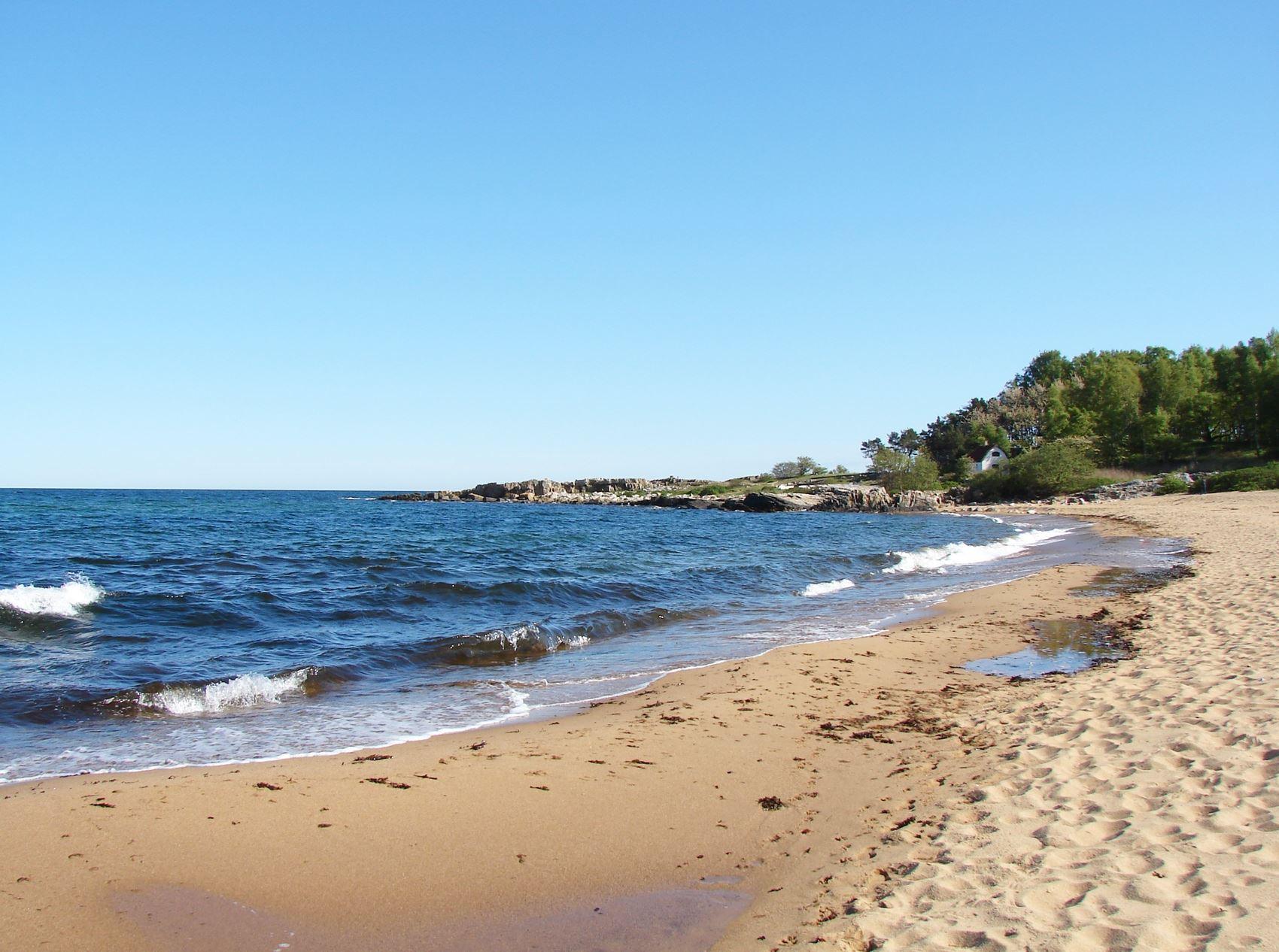 Beach - Tobisviksstrand