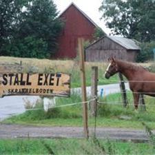 © stall exet, Stall Exet