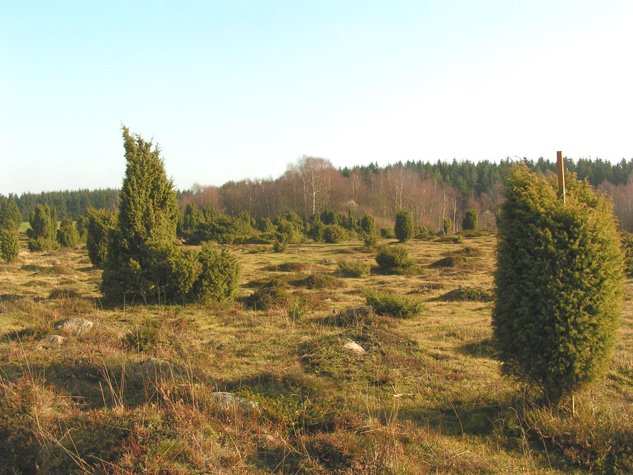 Linderödsåsens turism, Fjällmossen Nature Reserve