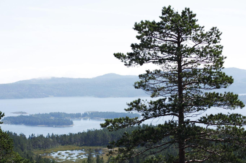 © Kramfors kommun, Högklinten