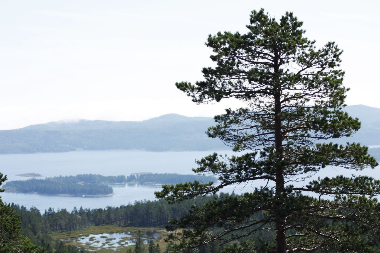 © Kramfors kommun, Utsikt Högklinten
