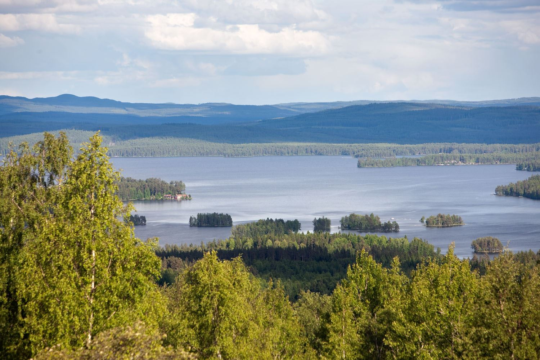 Fiskekort Runnfiske - Fiskevårdsområde