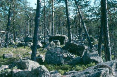 Lennart Bratt, Björnån Naturreservat