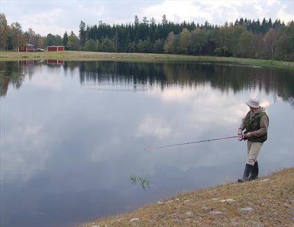 Ekemölla Sportfiske - Norra Skånes bästa flugfiskevatten