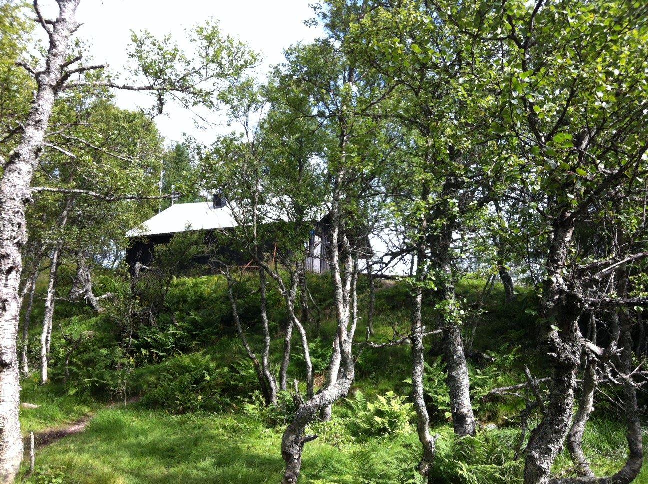 Tangå cabin