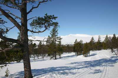 Länsstyrelsen Dalarna, Långfjällets naturreservat