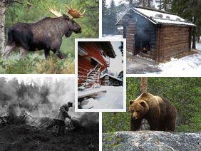Finnskogsriket
