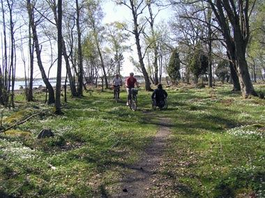 Lotta Bergström, Almö naturreservat