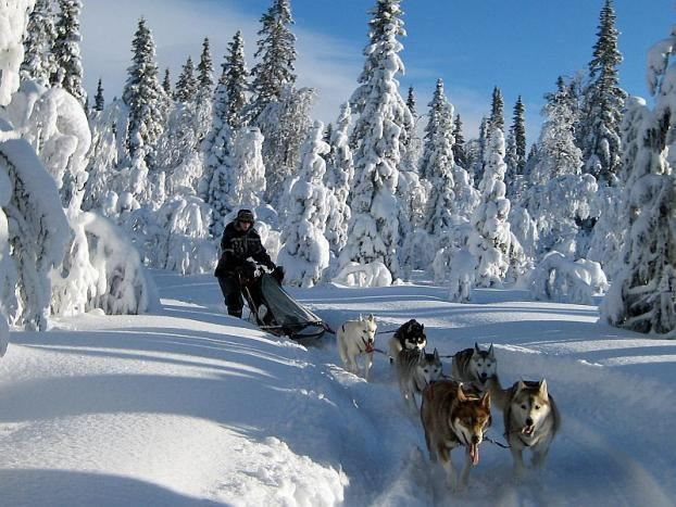 Siberian Adventure