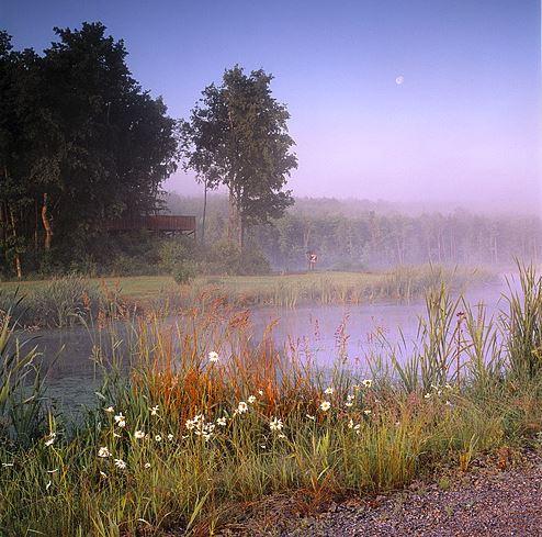 Sven Persson, Magle Wetlands