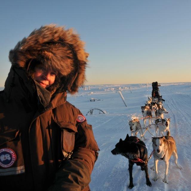Fjälläventyr - Dogsledding, Sälen
