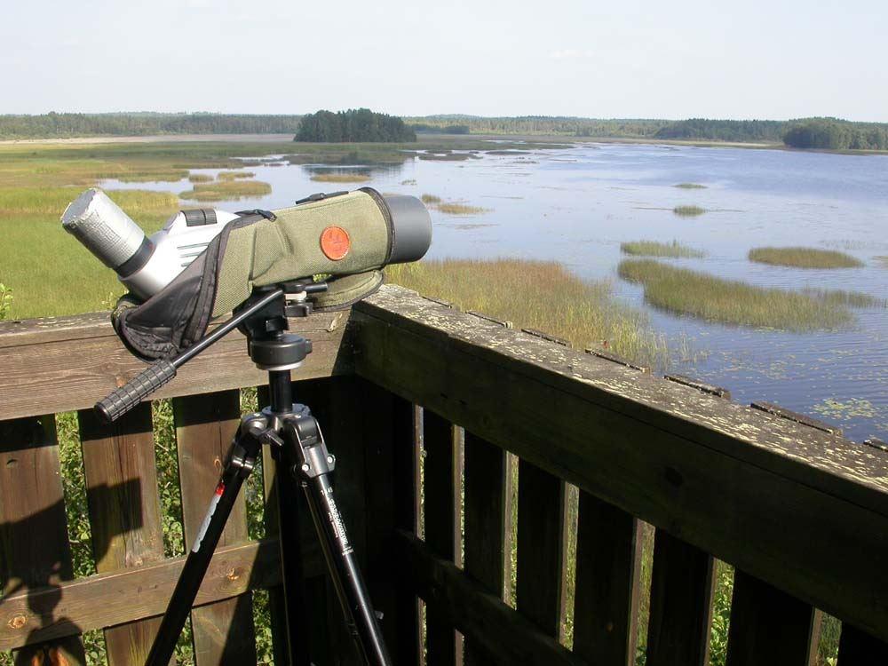 Mörlundaslätten - fågelskyddsområde