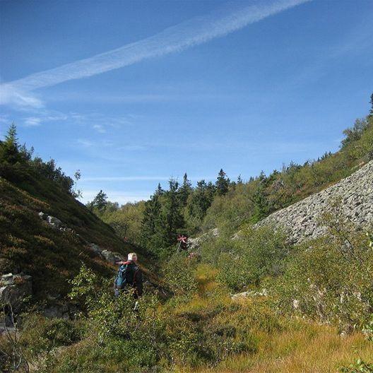 Hundfjället- Närsjön- Saldalen (Lill-Närfjället)