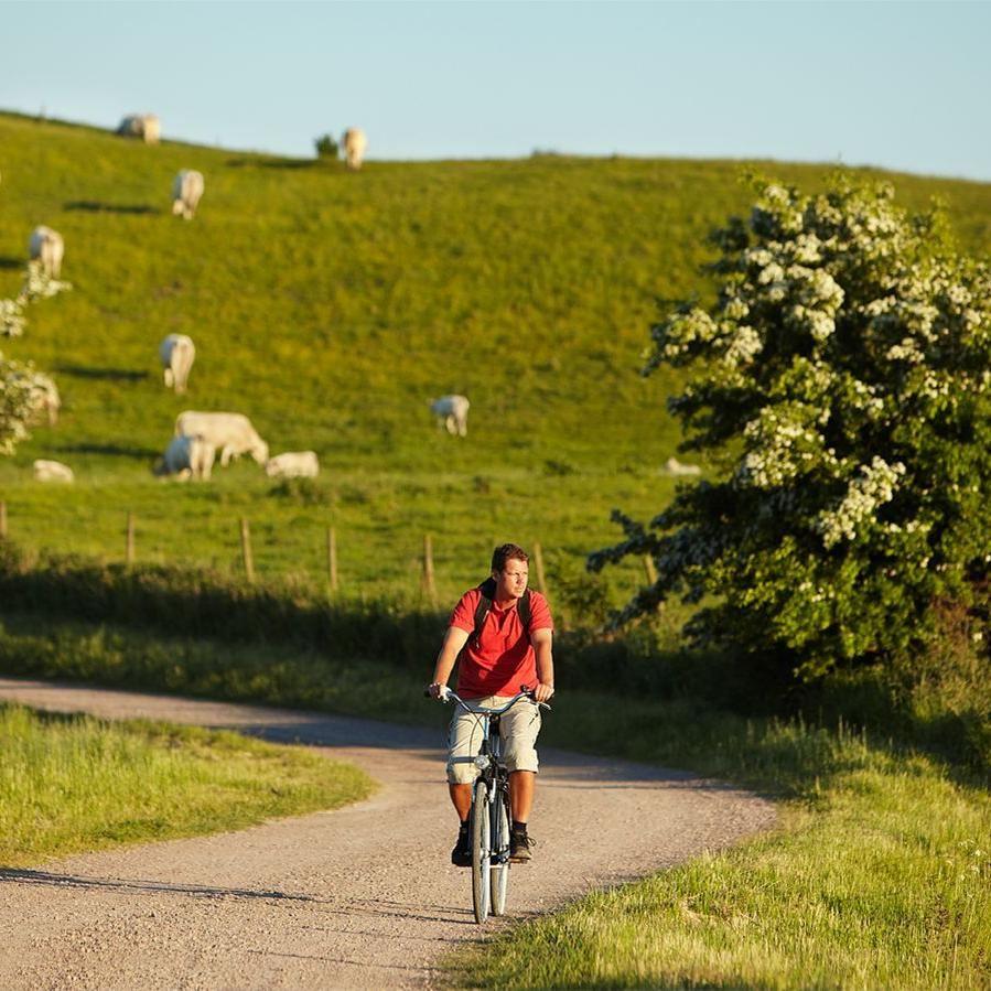 AndersEbefeldt/Studio-e.se,  © AndersEbefeldt/Studio-e.se, Bicycling in Landskrona