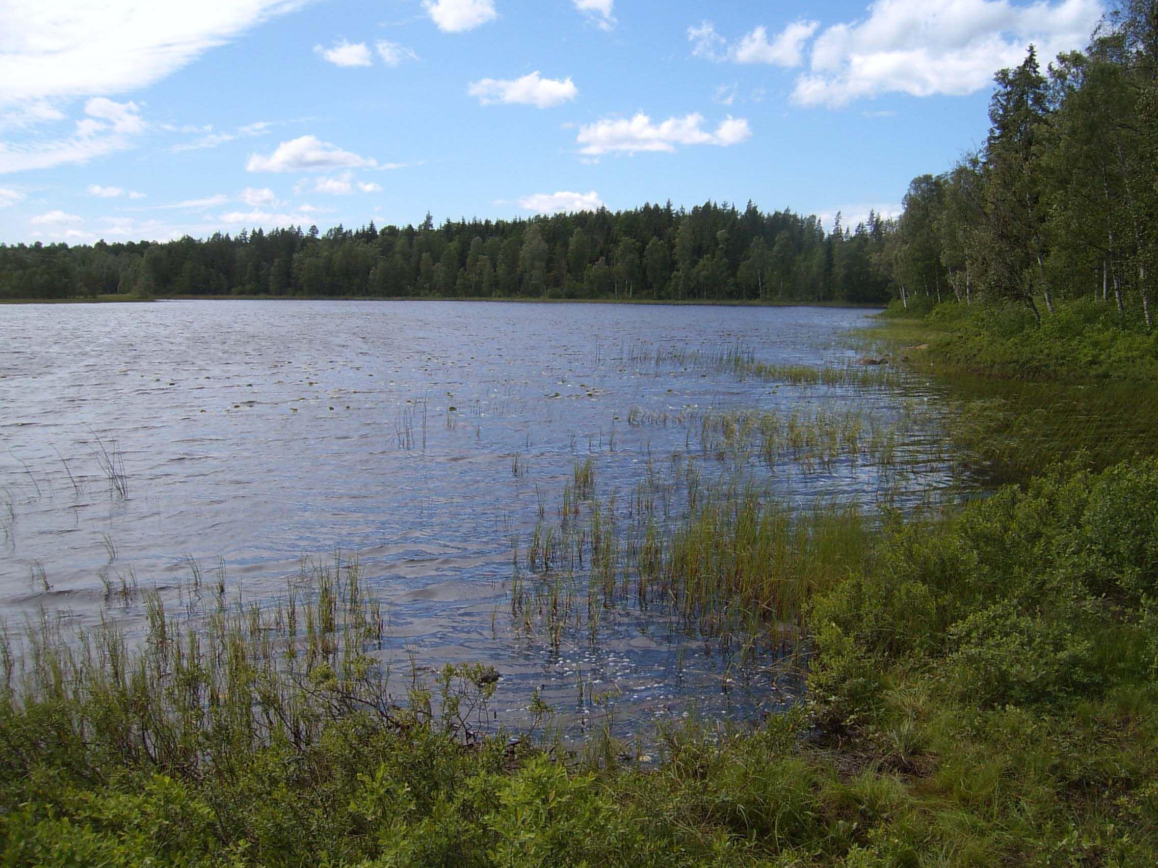 C-J Månsson, Färgsjön, Stora Hammarsjöområdet