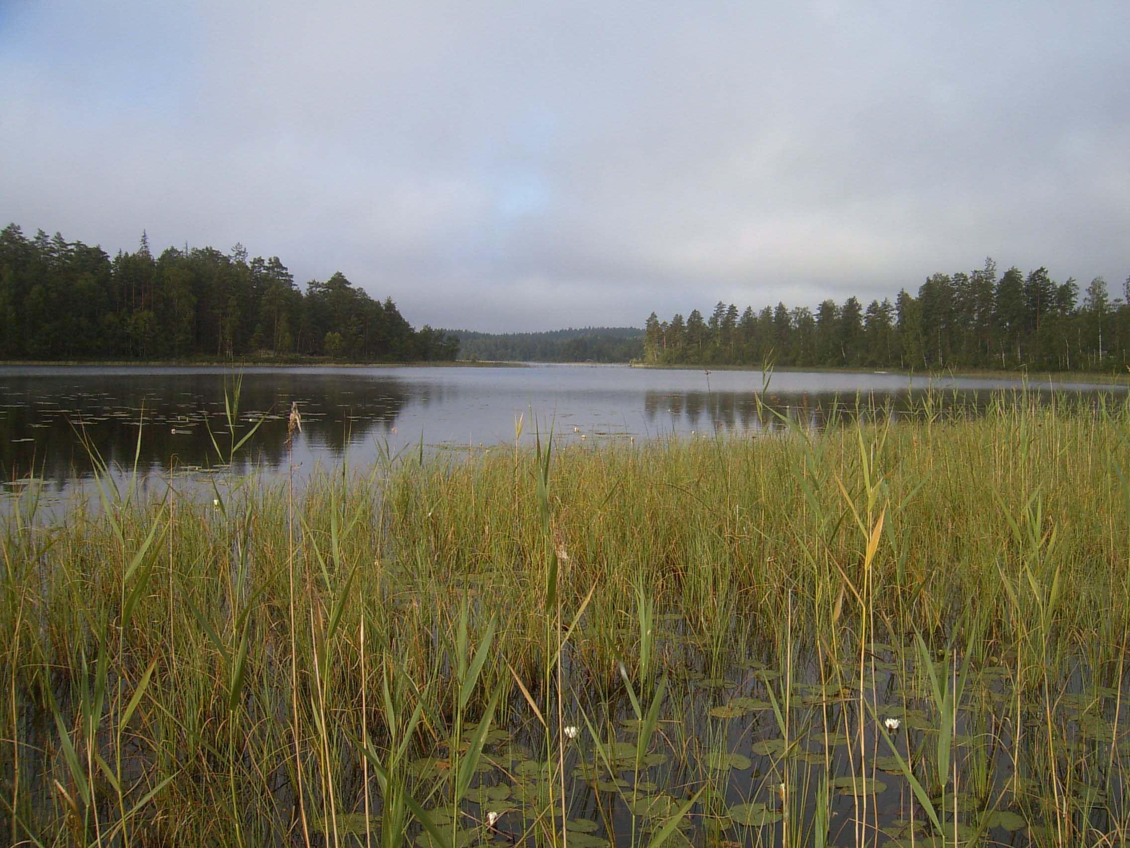 C-J Månsson, Stora Åkebosjön, Stora Hammarsjöområdet