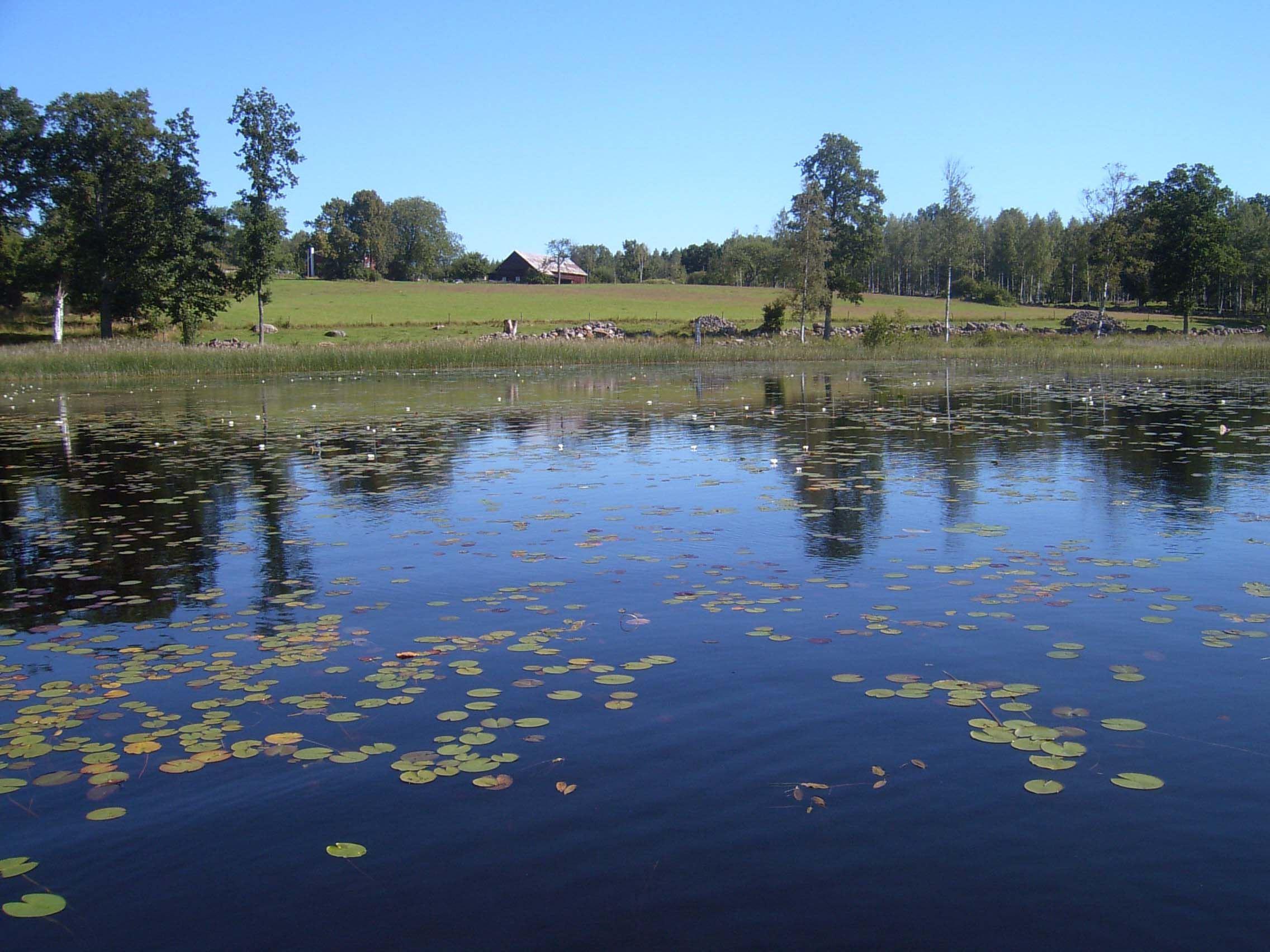 Lilla Åkebosjön, Stora Hammarsjöområdet