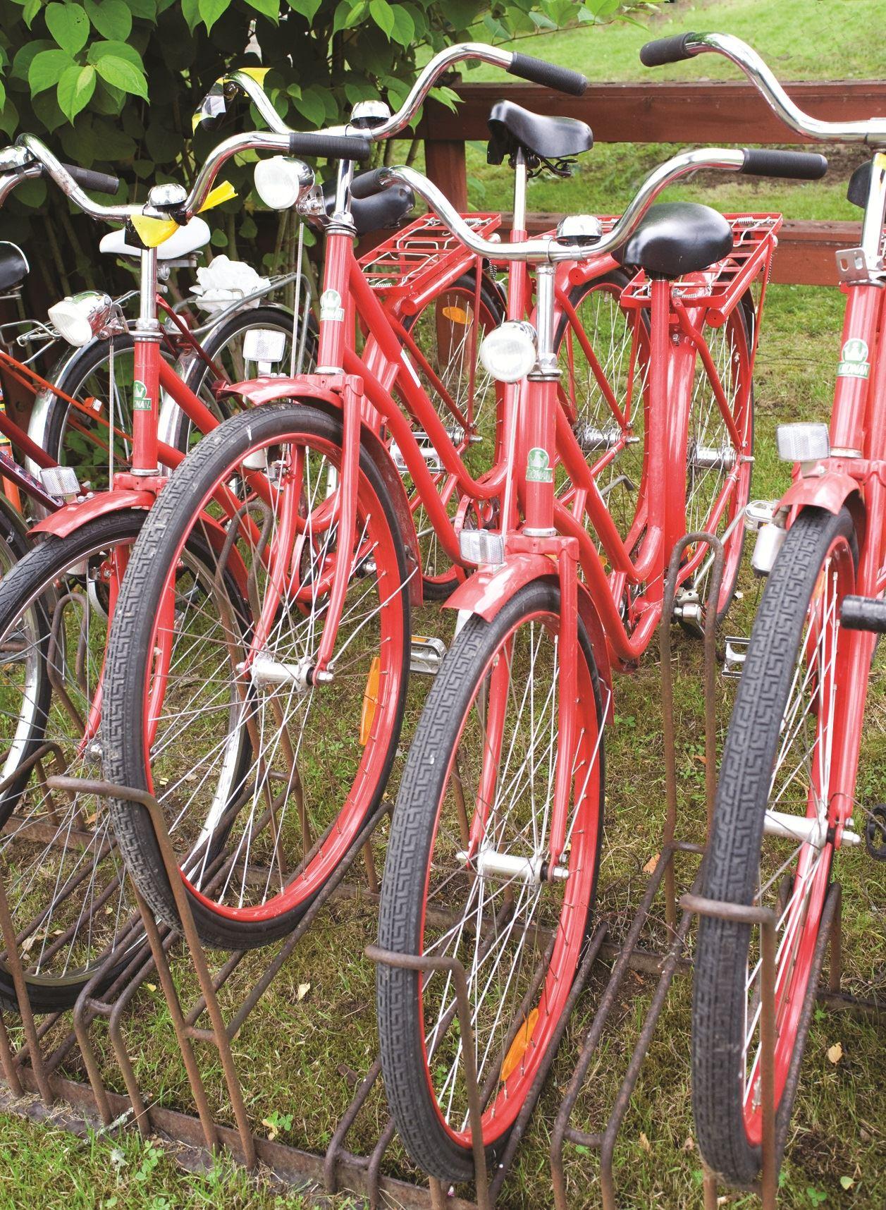 Cykelleden åsnen runt