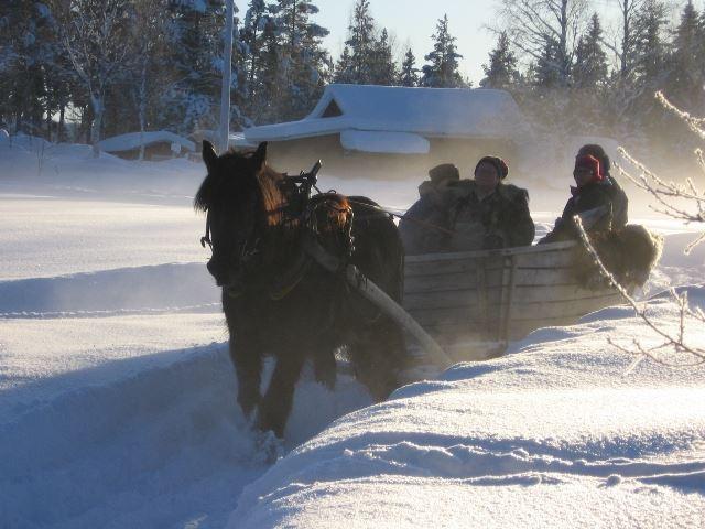 Det ska vi fira med häst och släde/vagn