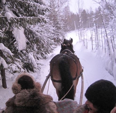 Hästtur - precis som i Bullerbyn