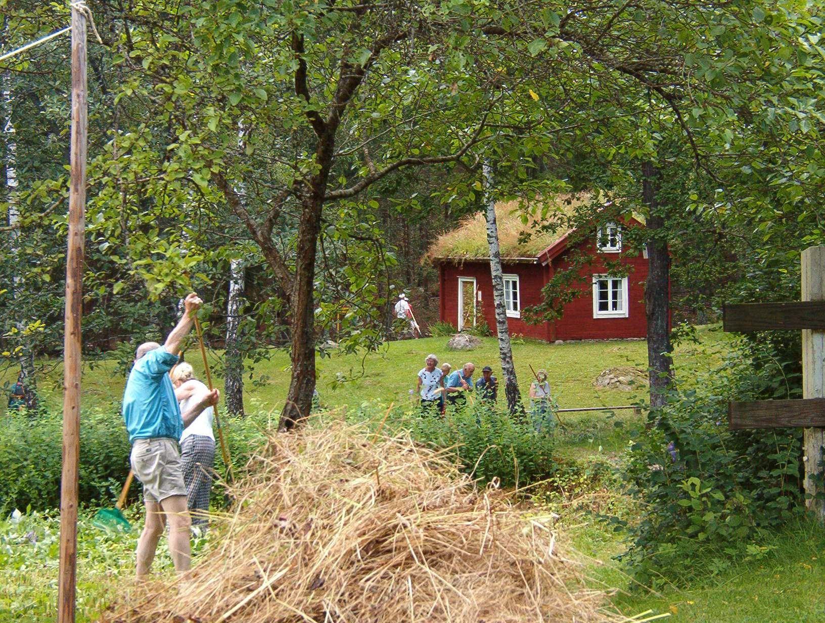 Roger Söderling,  © Älmeboda Hembygdsförening, Slåtter i hembygdsparken