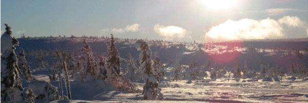 Sälsäterns Fjällgård - Stugor i Sälen, Lindvallen SVIF