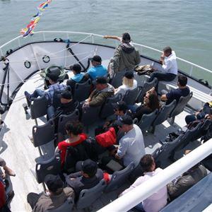 Croisière Feu d'Artifice à Bord du bateau