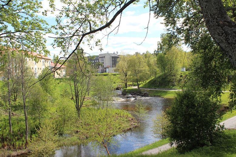 foto: Erica Björk,  © Kramfors kommun, Hälsans stig
