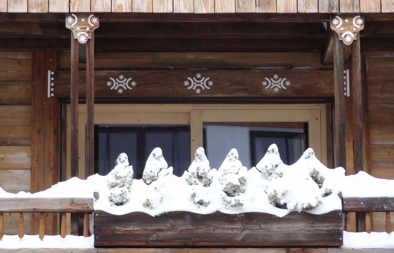 2 rooms 2/3 people / FLEUR DE NEIGE APPARTMENT 1 (mountain of charm)