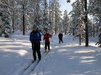 Skidspår i Norränge, Arbrå
