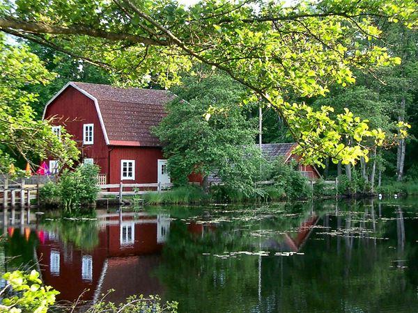 Kvarnen i Knällsberg,  © Kvarnen i Knällsberg, Kvarnen under sommaren
