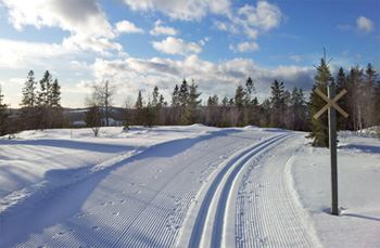© Arkiv Nordanstigs kommun, Skidspår i Ilsbo, Nordanstig