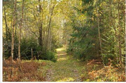 Naturreservat - Leksands Kommun
