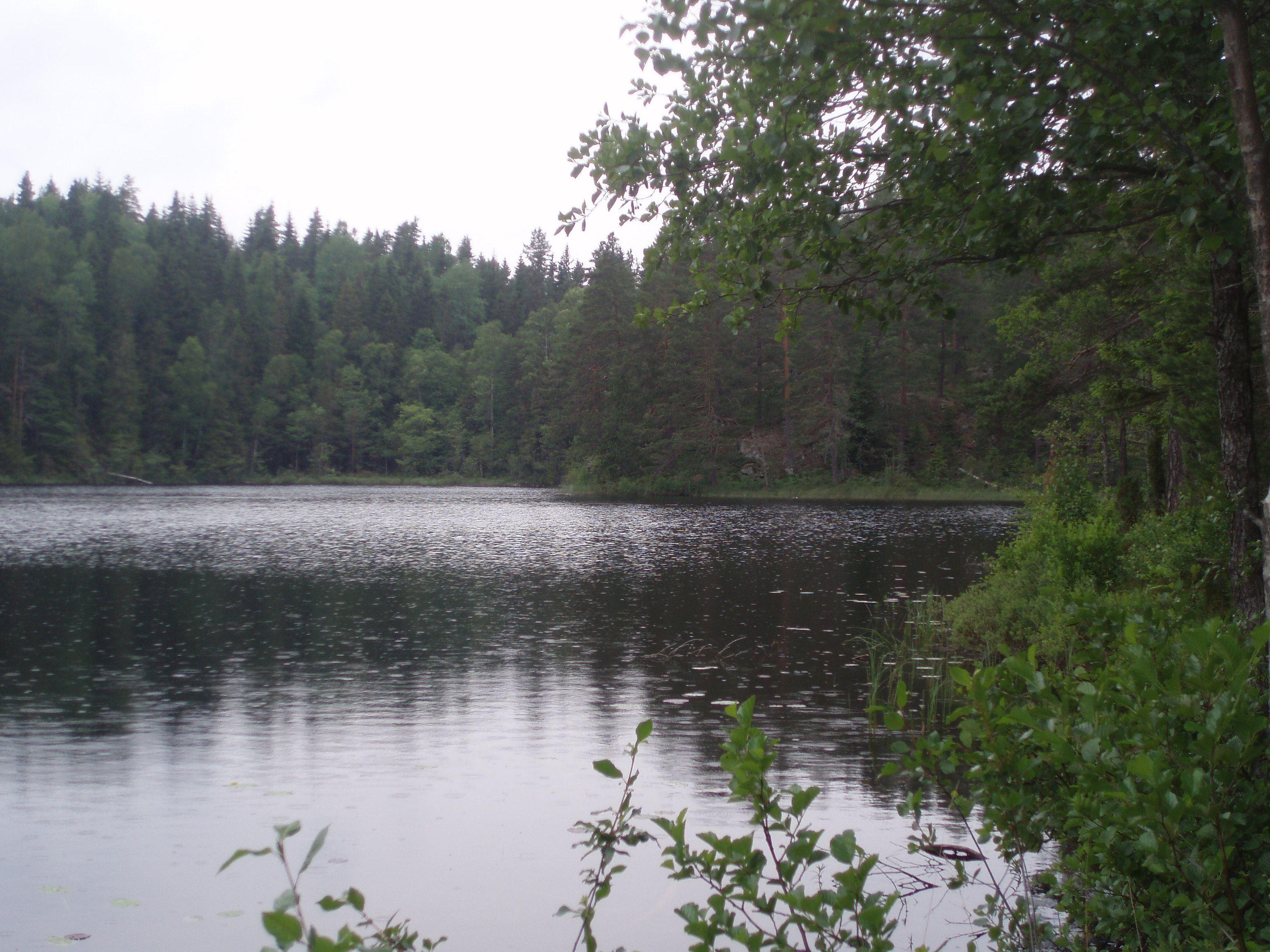 Askesjö