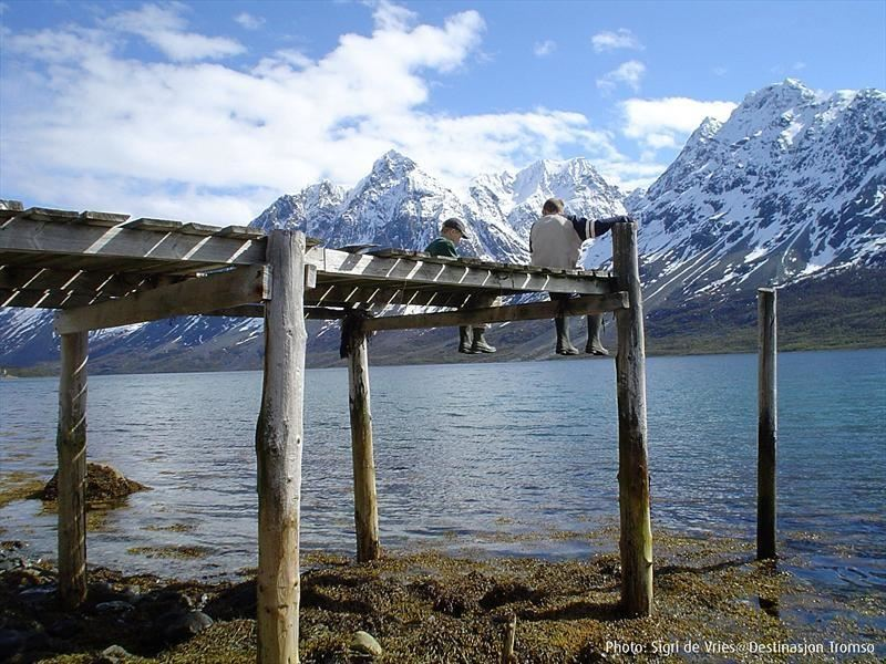 Day tour in the Lyngen Alps by bus